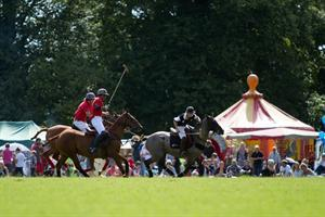 Polo for all at Grayshott Village Show