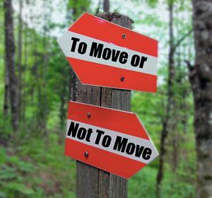 To Move or Not to Move! Is it the right time to move now?