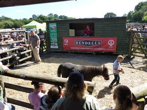 CHAGFORD COUNTRY SALE SATURDAY 29TH AUGUST
