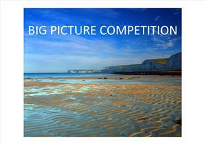 BIG PICTURE COMPETITION