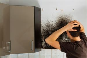 Keeping your home damp free